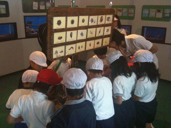 東和地区内の油田•和田•森野•城山小学校が、なぎさのお勉強に来てくれています!
