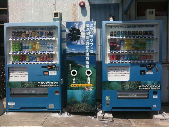 ニホンアワサンゴ環境保護•調査支援自販機が設置されました!
