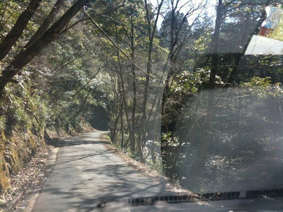 もみのき森林公園から冬季閉鎖区間を抜け湯来ロッジへ