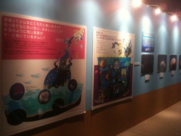 深海のいきもの研究所 NTTクレドホール