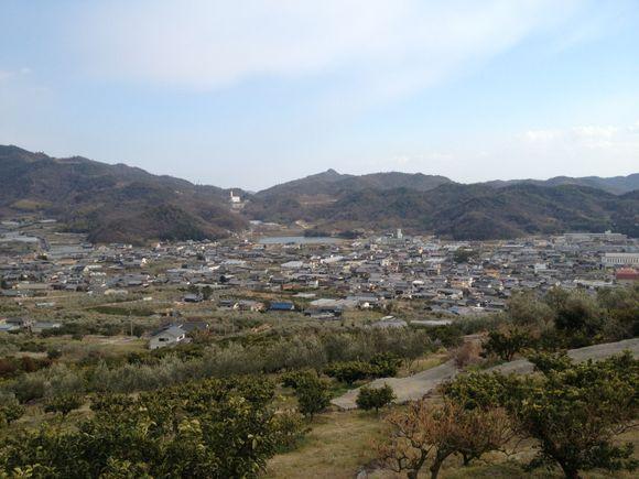小豆島の井上誠耕園さんにて視察研修