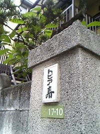 Dremkids Keiji 040722 1642