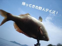 周防大島Photo 64 15 146415 116B98C0 640
